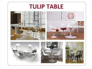 TULIP_TABLE_1A_WM